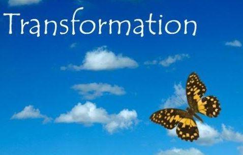 13-transformation